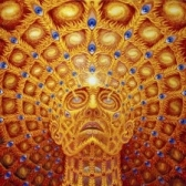 Alex Grey tickets