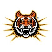 Idaho State Bengals Football tickets