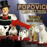 Popovich Comedy Pet Theater tickets