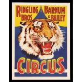 Ringling Bros B&B Circus tickets
