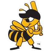 Salt Lake Bees tickets