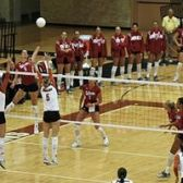 Texas Longhorns Volleyball tickets