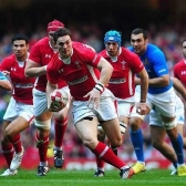 Wales Rugby / Wales v Italy tickets
