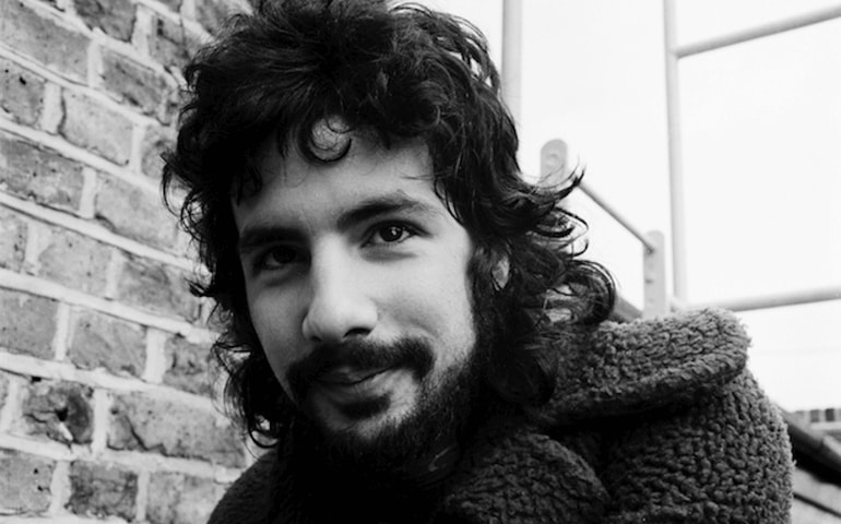 Cat Stevens - Did You Know?