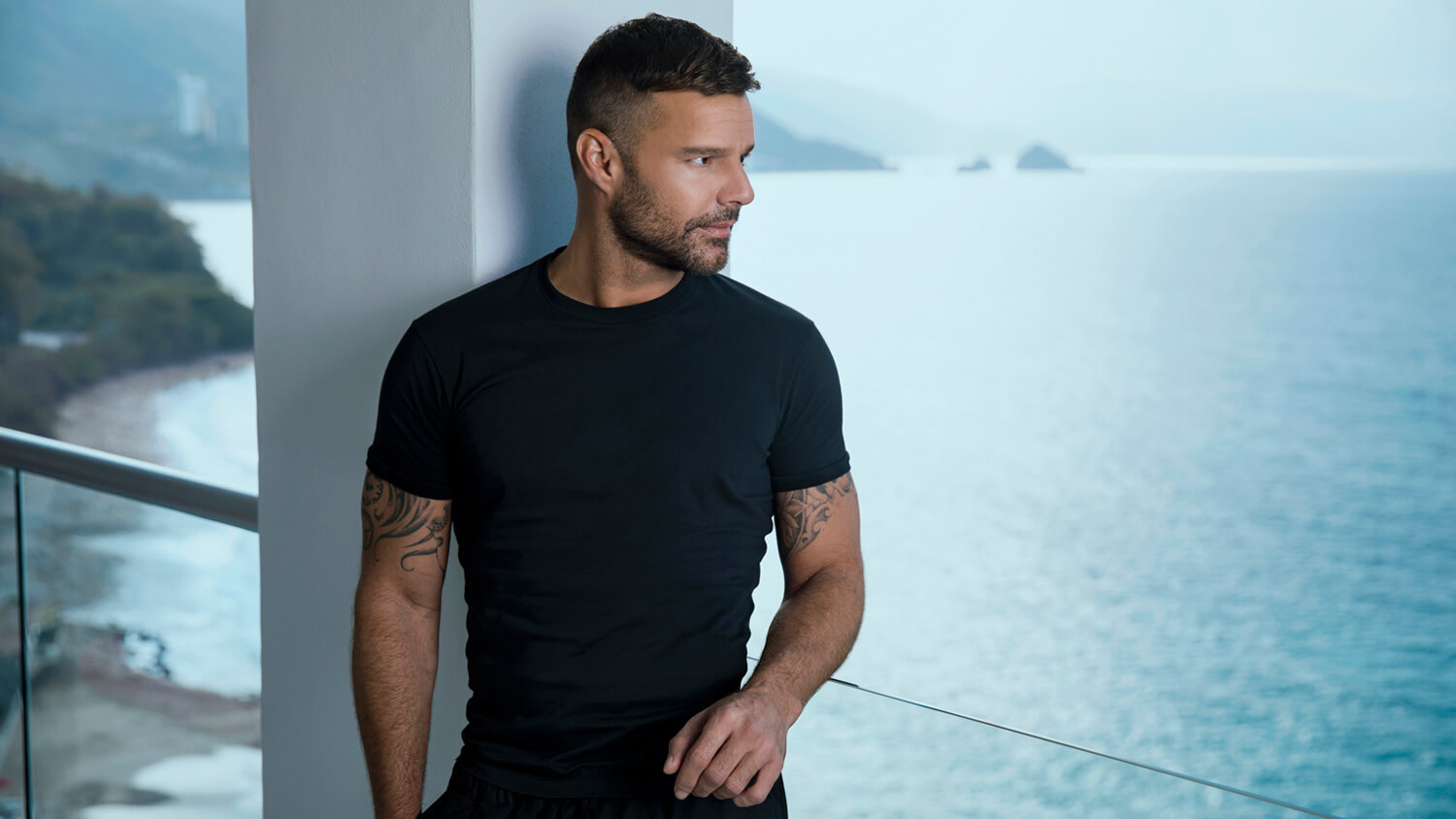 Ricky Martin - Did You Know?