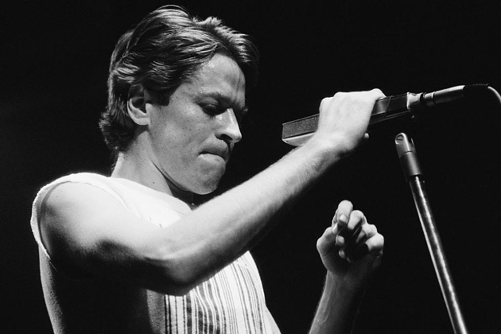 Robert Palmer - Did You Know?